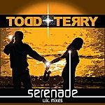 Todd Terry Serenade