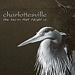 Charlottesville The Heron That Taught Us