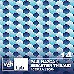 Paul Nazca Woh Lab 14