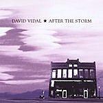David Vidal After The Storm