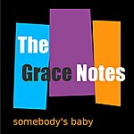 Grace Notes Quartet Somebody's Baby - Single