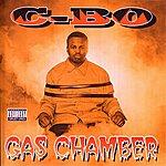 C-Bo Gas Chamber