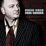 David Gogo Soul Bender