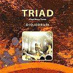 Triad Didjedrum