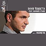 David Vendetta Holding On (Feat. Rachael Starr)