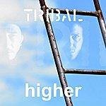 Tribal Higher