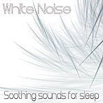 The White Noise White Noise