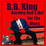 B.B. King Burning Red & Hot For The Blues