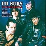 UK Subs Stranglehold