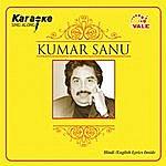 Instrumental Kumar Sanu