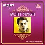 Instrumental Jagjit Singh