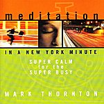 Mark Thornton Meditation In A New York Minute