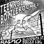 Teenage Bottlerocket Teenage Bottlerocket And Prototipes (Split Ep)