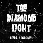 The Diamond Light Seeds In The Street