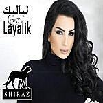 Shiraz Shiraz Collection