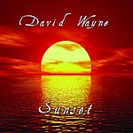 David Wayne Paint It Black - Single