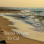 David Wayne Hotel California - Single