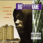 Big Daddy Kane Looks Like A Job For...