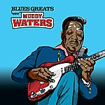 Muddy Waters Blues Greats: Muddy Waters