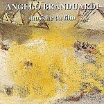Angelo Branduardi Musiche Da Film