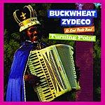 Buckwheat Zydeco Turning Point