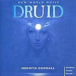 Medwyn Goodall Druid - The Druid Trilogy, Vol. 1