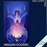 Medwyn Goodall Earth Healer