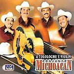 Conjunto Michoacan A Tololoche Y Violin