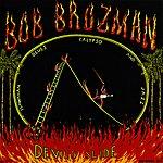 Bob Brozman Devil's Slide