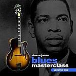 Elmore James Blues Guitar Masterclass Volume 1