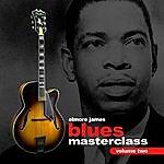 Elmore James Blues Guitar Masterclass Volume 2