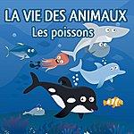 Patrick Oliver La Vie Des Animaux (Les Poissons)