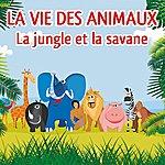 Patrick Oliver La Vie Des Animaux (La Jungle Et La Savane)