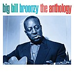 Big Bill Broonzy The Anthology