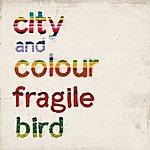 City and Colour Fragile Bird