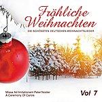 Wiener Sängerknaben Fröhliche Weihnachten Vol. 7