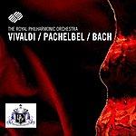 Royal Philharmonic Antonio Vivaldi