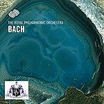 Royal Philharmonic Johann Sebastian Bach
