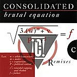Consolidated Brutal Equation (Single)
