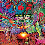 The Grip Weeds Infinite Soul: The Best Of The Grip Weeds