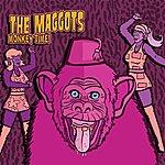 The Maggots Monkey Time!