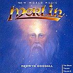 Medwyn Goodall Merlin