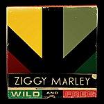 Ziggy Marley Wild And Free