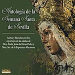 Varios Antología De La Semana Santa De Sevilla CD 2