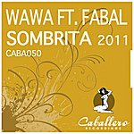 Wawa Sombrita 2011 - Single