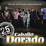 Caballo Dorado 25 Aniversario