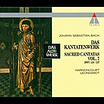 Nikolaus Harnoncourt Bach, Js : Sacred Cantatas Vol.7 : Bwv 119-137