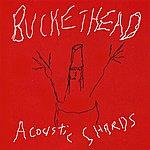 Buckethead Acoustic Shards