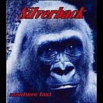 Silverback Nowhere Fast