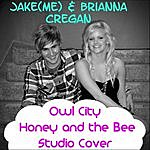 Jake Owl City - Honey And The Bee